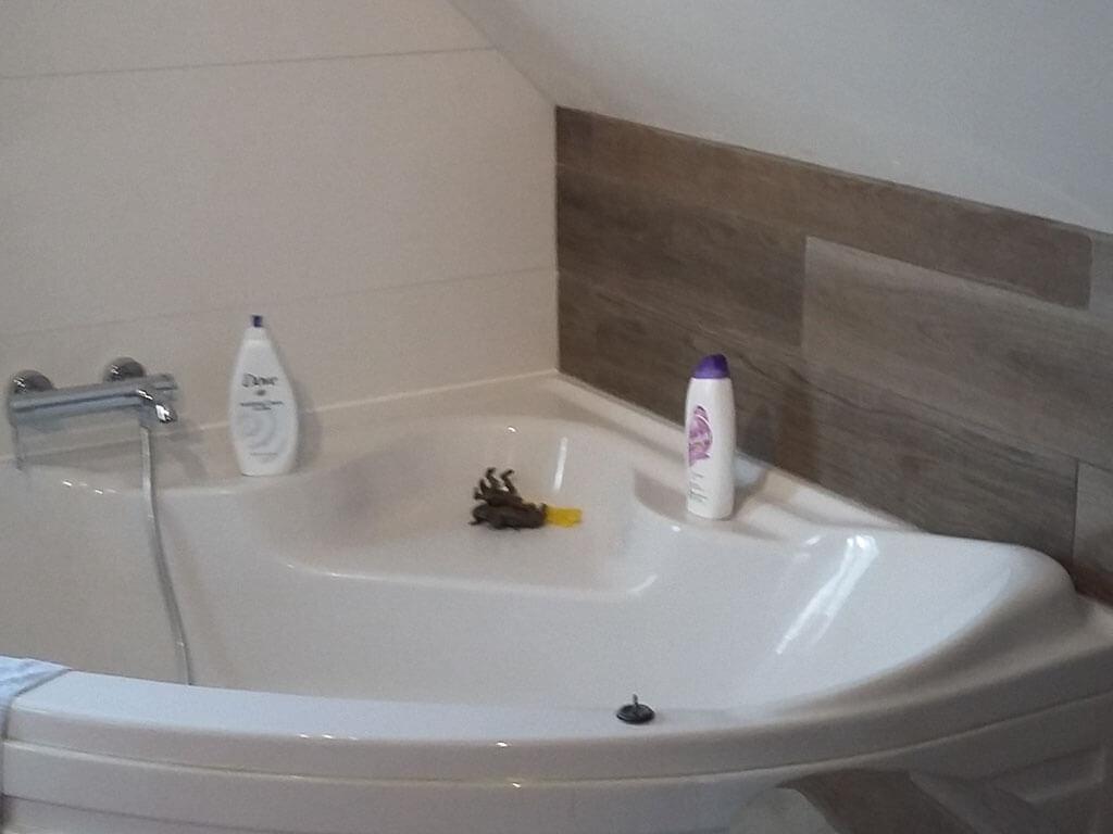 Bathroom-2-Bathtub-After